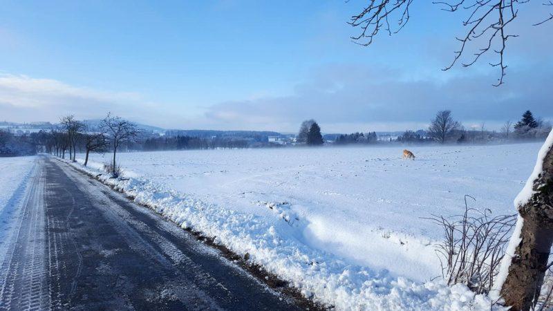 Traumhafte Winterlandschaft bei Sparneck
