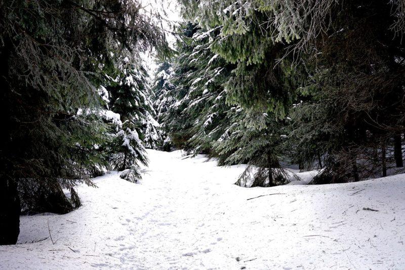 Schwierig zu gehen ohne Schneeschuhe