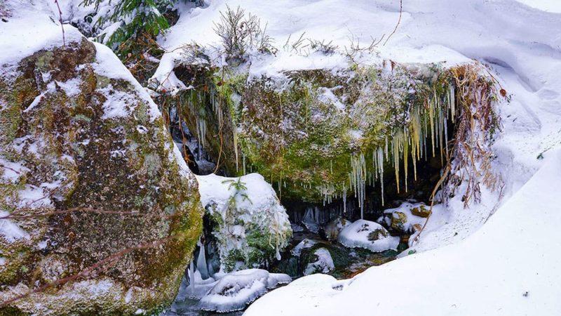 Der Frost regiert das Fichtelgebirge