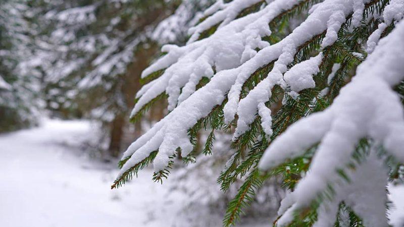 Winterimpressionen im Fichtelgebirge